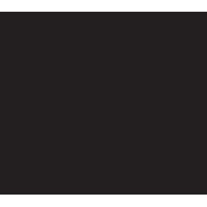 shoddy mugs