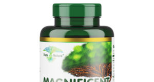 magnificent you supplements