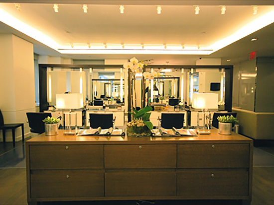 pierre michel salon