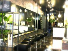 FRED Salon New York